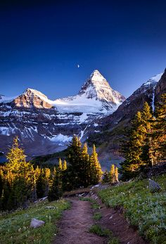 Mount Assiniboine, British Columbia, Canada, wilderness campsites.