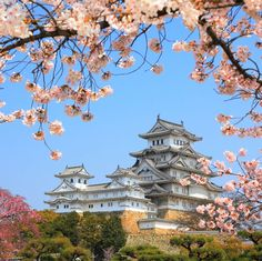 The main tower of the Himeji Castle, aka the white heron castle, surrounded by Sakura cherry blossoms. Popular sightseeing location, listed as an UNESCO world heritage. Hyogo, The Places Youll Go, Places To See, Himeji Castle, Japanese Castle, Japan Travel Tips, Asia Travel, Visit Japan, Japan Travel
