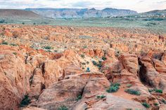 Explore the Red Cliffs Desert Reserve outside of St. George, Utah