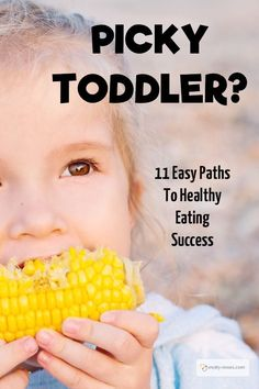 Help! My toddler won't eat! 11 Great Tips to Transform your Picky Toddler into a Healthy Eater and start them on the route to healthy eating.