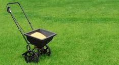 Browse photo gallery of Almighty Lawn Care lawn mowing and garden maintenance service Cairns. Get the expert lawn mowing services in Cairns.