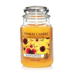 Yankee Candle collections offer a wide range of scented candles and fragrances. Find unique candle scents to brighten and freshen your living spaces. Bougie Yankee Candle, Yankee Candle Scents, Yankee Candles, Perfume, Best Smelling Candles, Sunflower Kitchen, Bath Body Works, Candle Accessories, Best Candles
