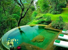 infinity pool jungle