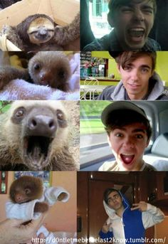 anyone else think Nathan Sykes looks like Sid the Sloth?