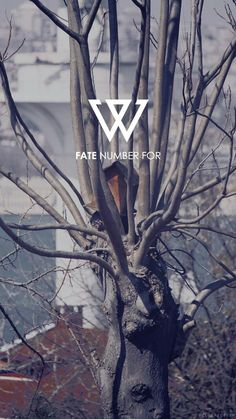 "kkang baljang on Twitter: ""[WINNER - 'FOOL' M/V TEASER] Watch ..."