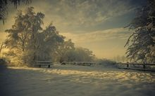 light landscapes nature winter snow trees shadows bench hoarfrost Wallpaper