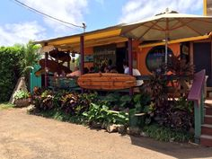 Our favorite Açaí Bowls and smoothies on the North Shore in Haleiwa. Waialua Bakery, Haleiwa, Oahu, Hawaii - I miss Hawaii! The inside of this cute lil cafe has adorable sayings written all over the walls. not to mention great food! Miss Hawaii, Aloha Hawaii, Hawaii Vacation, Hawaii Travel, Cancun Mexico Resorts, North Shore Hawaii, Hawaii Things To Do, Hawaiian Decor, Hawaii Homes