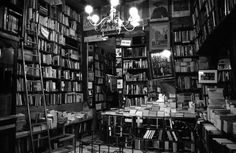 i love the ladder, the shelves, and the lamp and yeah, love it. i can just smell the old books already.