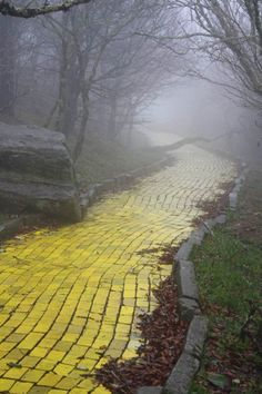 "the mist of the mountain fog, highlighting the yellow, curving road, inviting you to travel at your own risk down the yellow brick road. The yellow brick road from the abandoned theme park ""The Land of Oz"" in Beech Mountain, North Carolina Oh The Places You'll Go, Places To Visit, Beech Mountain, Land Of Oz, All Nature, Wizard Of Oz, Mellow Yellow, Abandoned Places, Abandoned Buildings"