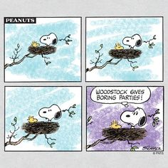 Snoopy and Woodstock in Nest - Woodstock Gives Boring Parties