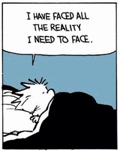 """I Have Faced All the Reality I Need to Face"", Calvin and Hobbs Quote, so true."