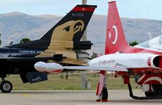 Two stars: Soloturk and Turkish star