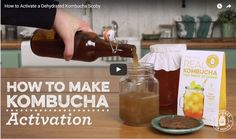 HOW-TO VIDEO: Activating a Dehydrated Kombucha SCOBY