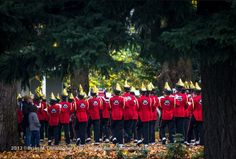 Camas High School Band at the Veteran's Day Parade 2012 at Fort Vancouver National Historic Site in Washington State.