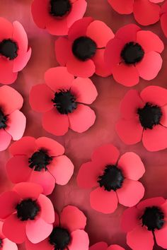 Make tissue paper poppies flowers flower arranging pinterest diy paper poppy backdrop the house that lars built paper flowers diy diy paper mightylinksfo