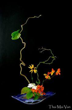 L'art floral japonais Ikebana, Thai Mai Van Arrangements Ikebana, Ikebana Flower Arrangement, Flower Arrangements Simple, Art Floral Japonais, Art Japonais, Deco Floral, Arte Floral, Japanese Flowers, Japanese Art