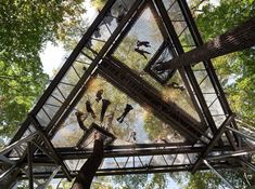 Biophilia: 10 examples of nature and architecture blending harmoniously | News | Archinect
