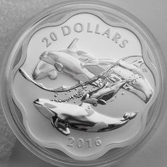 Canada 2017 EXCLUSIVE Masters Club Coin Series #2 – 99.99% Pure Silver Orca Canadian Coins, Coin Design, Commemorative Coins, Coin Collecting, Silver Coins, Superman, Masters, Outdoor Living, Art Pieces