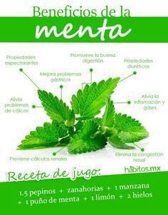 Jugo de menta #habitosmx #hábitos #salud #health