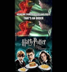 Lol I love this. It's a good thing we're getting new Harry Potter material this year. Humour Harry Potter, Harry Potter Fandom, Harry Potter World, Phoenix Harry Potter, Harry Potter Quidditch, Hogwarts, Funny Memes, Hilarious, Top Funny