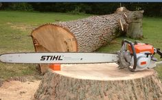 Stihl 090   R, I think. The most powerful production chainsaw ever made.