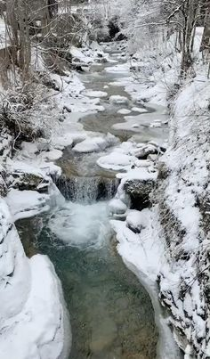 Beautiful Nature Scenes, Amazing Nature, Beautiful World, Christmas Scenery, Winter Scenery, Winter Photography, Landscape Photography, Nature Photography, Winter Pictures
