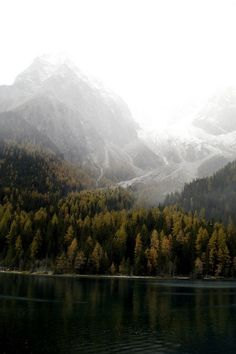Foggy mountains over a lake and autumn trees. A dreamy scene!