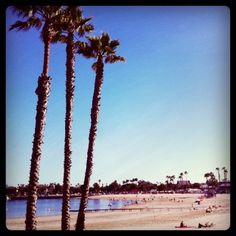 Mother's Beach ~ Marina del Rey