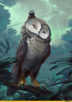 Thomas Chamberlain - Keen,красивые картинки,art,арт,совы #FredericClad #THEFARM