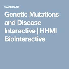 Genetic Mutations and Disease Interactive | HHMI BioInteractive
