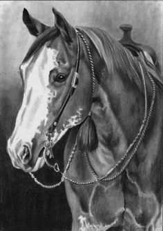 Graphite pencil, oil and pastel portraits capturing the timeless beauty of the horses and people of the American West. Horse Pencil Drawing, Horse Drawings, Animal Drawings, Horse Love, Horse Girl, Pur Sang, Horse Coloring Pages, Horse Artwork, Horse Portrait