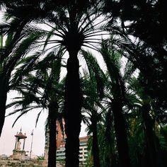 València v Valencia, Valencia