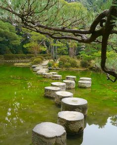 Heian Shrine Gardens in Kyoto, Japan (by PapaCuppa).