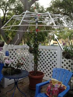 Jasmine would be awesome when it's blooming and the leaves are pretty all year ~~ Use PVC pipes to create a living canopy. - Top 20 Low-Cost DIY Gardening Projects Made With PVC Pipes Pvc Pipe Crafts, Pvc Pipe Projects, Diy Garden Projects, Outdoor Projects, Diy Trellis, Garden Trellis, Trellis Ideas, Wisteria Trellis, Wisteria Tree