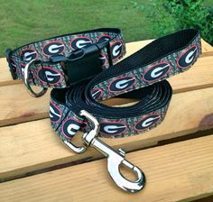 142 Best Dog Collars & Leashes images | Best dogs, Dog collars ...