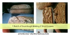 Sourdough Starter and Basic 3 (or 4) Ingredient Sourdough Bread Recipe