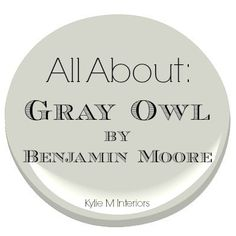 learn about gray owl by benjamin moore and its undertones and uses in a room and on a wall