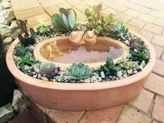 Terrific No Cost cactus plants ideas Tips Plants in addition to cactus are classified as the great property interior decoration intended for minimalist Succulent Gardening, Planting Succulents, Succulents Drawing, Indoor Succulents, Succulent Care, Container Gardening Vegetables, Succulents Diy, Planting Flowers, Cactus Plante