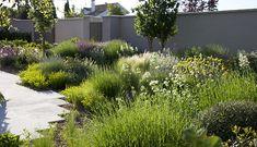 Exterior Inspiration: Spring in the Air Dry Garden, Mediterranean Garden, Xeriscaping, Garden Types, Garden Landscape Design, Landscape Architecture, Contemporary Garden, Garden Structures, Cool Landscapes