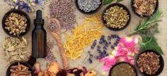Botica Natural: Plantas Medicinales para curar y mejorar la piel