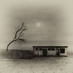 larry wise.....untitled