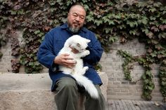 ai weiwei with his cat