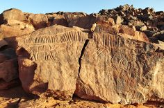 Crocodile rock engraving, Messak, Libya. © David Coulson/TARA.