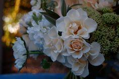 The Monkey Flower Group Web Log: August 2011