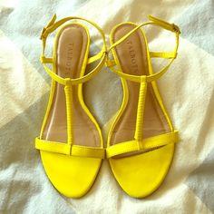 Selling this Talbot's Sandals in my Poshmark closet! My username is: amandamlea. #shopmycloset #poshmark #fashion #shopping #style #forsale #Talbots #Shoes