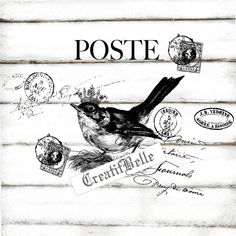 French Vintage Post Bird Large black and white by CreatifBelle