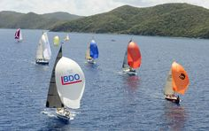 The BVI Spring Regat