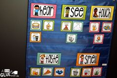 Engage your class in an exciting hands-on experience learning the five senses! Perfect for science activities for Kindergarten, First Grade,… Five Senses Kindergarten, Five Senses Preschool, 5 Senses Activities, My Five Senses, Kindergarten Lesson Plans, Kindergarten Science, Preschool Themes, Science Activities, Science Fun