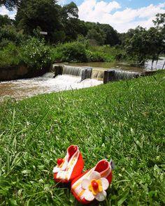 WEBSTA @sapatiko SaPaTikO Flora passeando nO parque 🍃❤🍃 ...fofuras exclusivas feitas à mão!!!