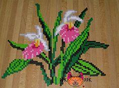 Flower Showy Lady's Slipper perler fuse beads by PPK